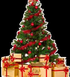 Veselé Vánoce a šťastný Nový rok 2019!